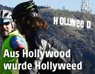 Hollyweed-Schriftzug