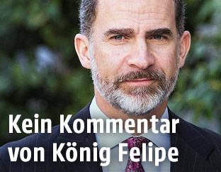 Spaniens König Felipe