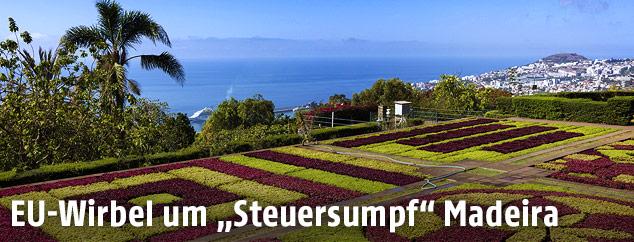 Blick auf Funchal vom Botanischen Garten aus