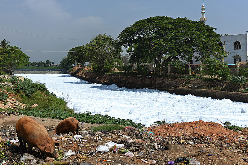 Schaum auf einem Fluss in Bangalore