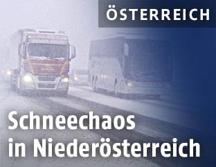 Lkw und Bus im Schneechaos