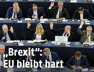 EU-Parlamentarier stimmen ab
