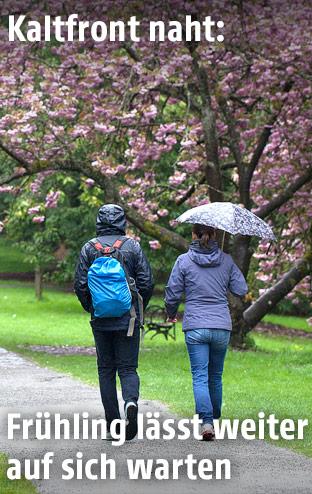 Zwei Menschen gehen bei Regen an einem blühenden Baum vorbei