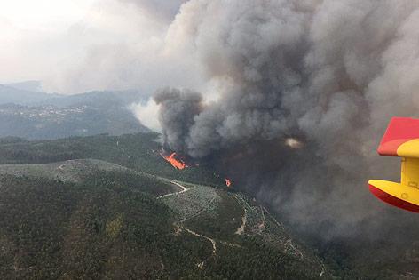 Blick aus Löschflugzeug auf Waldbrand