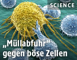 Illustration von Krebszellen