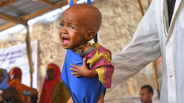 Koordinierte Hilfe gegen Hungersnöte