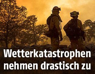 Feuerwehrmänner vor einem Waldbrand