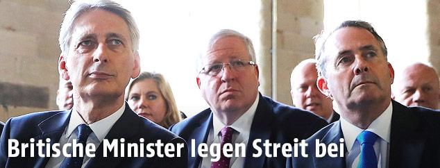 Die britischen Minister Philip Hammond und Liam Fox