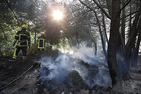 Feuerwehrmänner bekämpfen einen Waldbrand auf Korsika