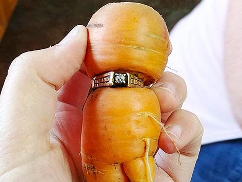 In Karotte eingewachsener Ehering