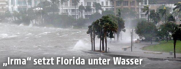 Überschwemmung in Biscayne Bay (Florida)