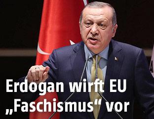 Der türkische Premier Erdogan