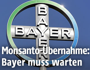 Logo des Pharmakonzerns Bayer