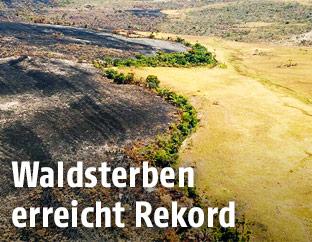 Zerstörungen im Naturschutzpark