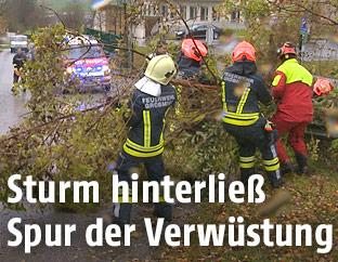 Feuerwehrleute entfernen einen Baum von der Straße