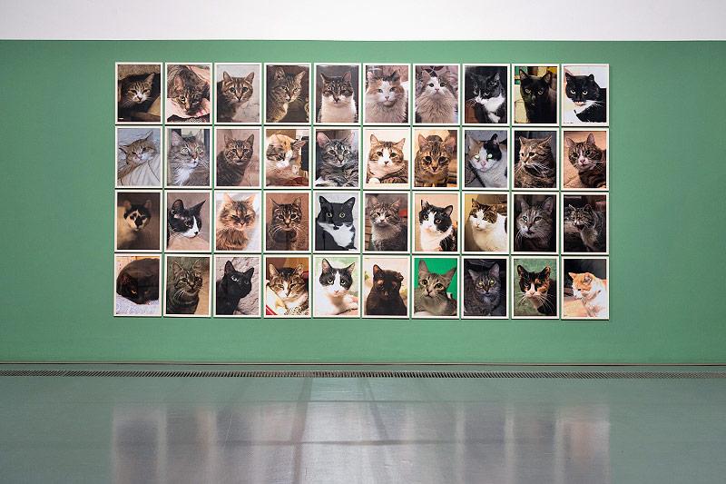 Anna Jermolaewas Galerie der Katzen der Eremitage, die in dem Zarenpalast die Mäuse jagen