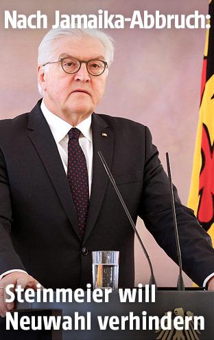 Der deutsche Präsident Frank-Walter Steinmeier