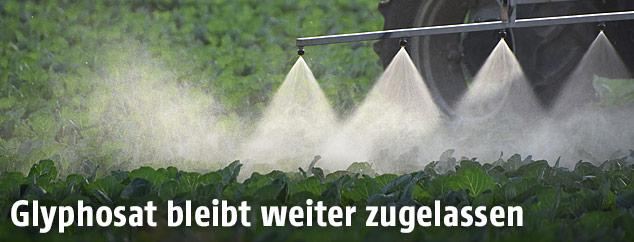 Ein Traktor sprüht Pestizide