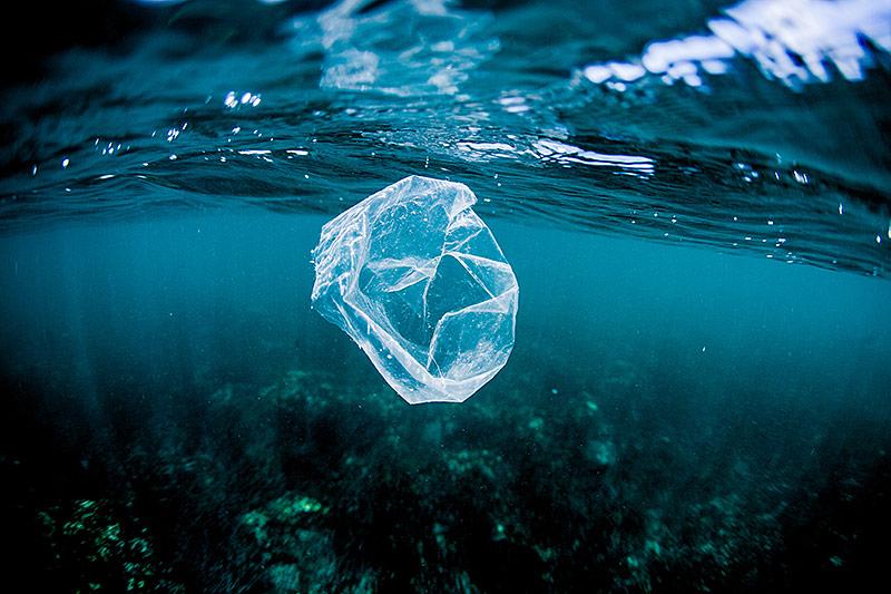 Plastiksackerl schwimmt im Meer