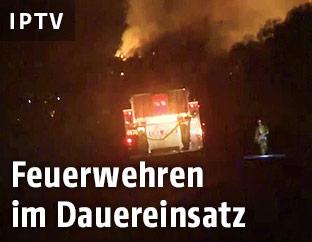 Feuerwehrauto bei einem Waldbrand