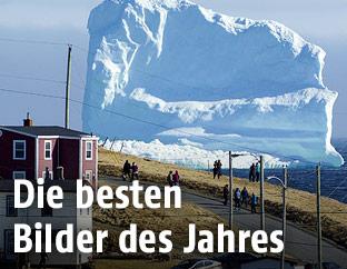 Eisberg vor Neufundland