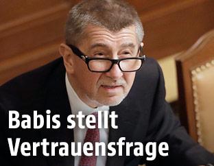 Der tschechische Ministerpräsident Andrej Babis