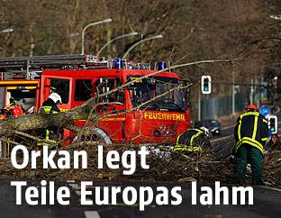 Feuerwehrleute entfernen die vom Sturm umgestürzten Bäume auf der Straße bei Haunau in Deutschland