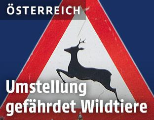 """Verkehrsschild """"Achtung Wildwechsel"""""""