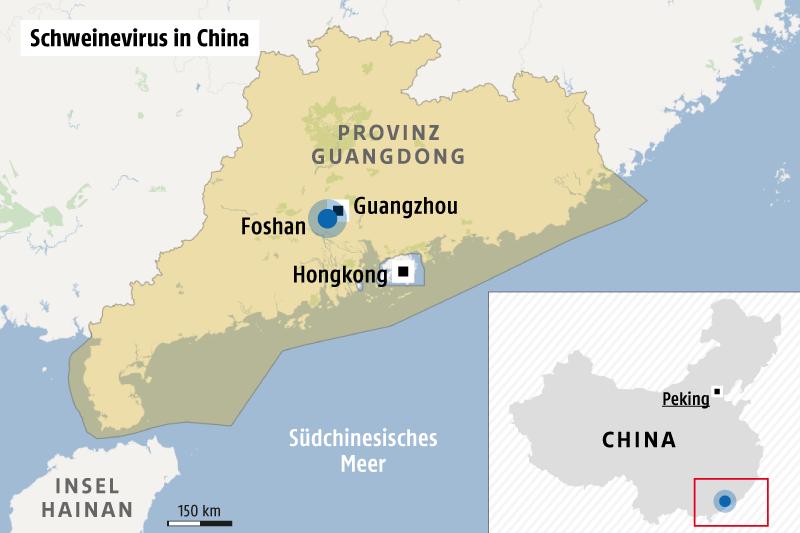 Schweine Virus China