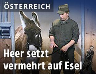 Bundesheersoldat mit Esel