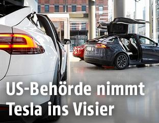 Tesla-Autos