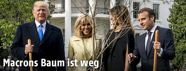 Der französische Staatschef Emmanuel Macron pflanzt gemeinsam mit US-Präsident Donald Trump einen Baum, die Ehefrauen Brigitte und Melania schauen dabei zu