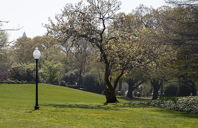 Rasen auf dem Grund des Weißen Hauses in Washington DC
