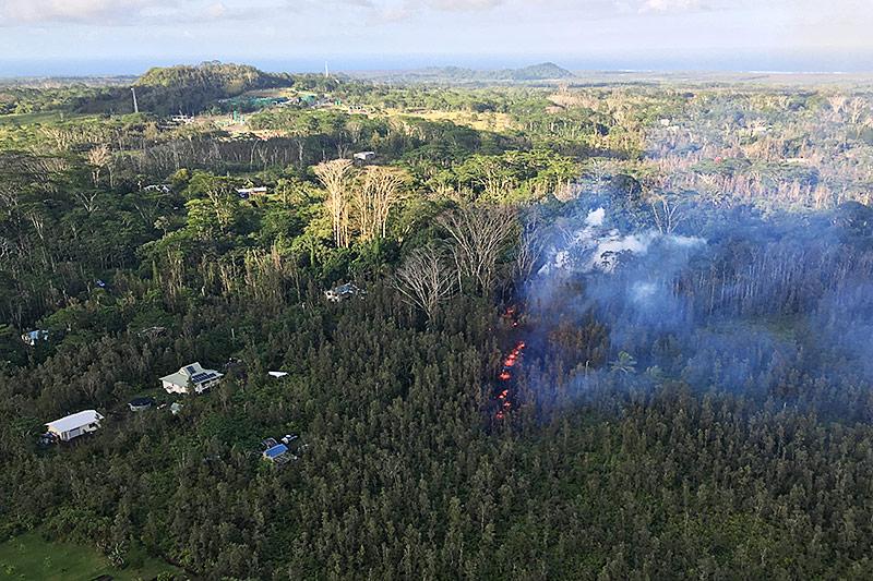 Lava strömt aus dem Waldboden