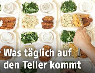 Portionierte Mahlzeiten auf mehreren Tellern