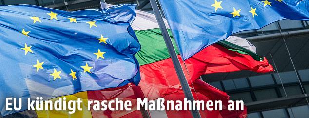EU-Flagge und EU-Länder-Flaggen vor dem EU-Parlament in Straßburg