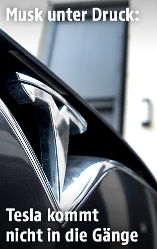 Tesla-Logo auf einem Tesla Modell S