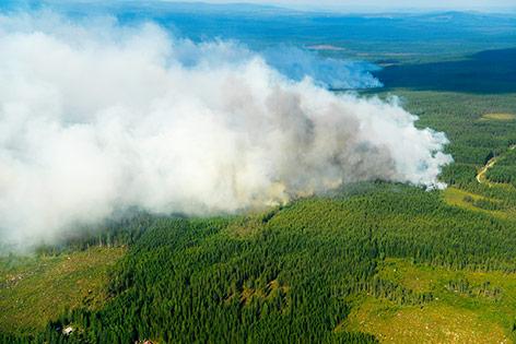 Waldbrand in Schweden
