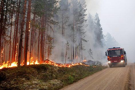 Feuerwehrauto neben brennendem Wald