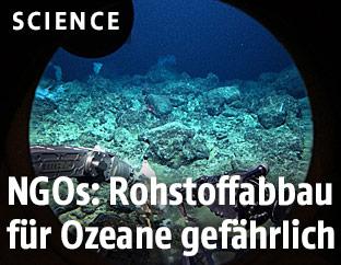 Aufnahme vom Meeresboden