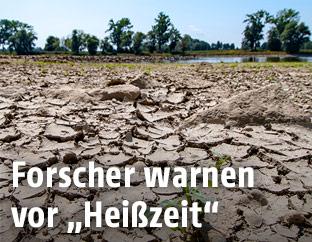 Ausgetrocknetes Flussbett der Donau in Deutschland